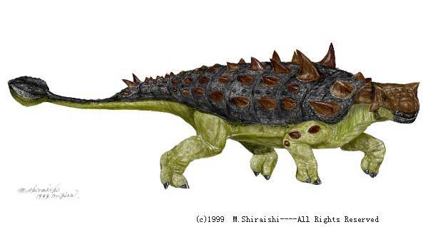 euoplocephalus.jpg