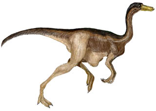 ornithomimosaur.jpg